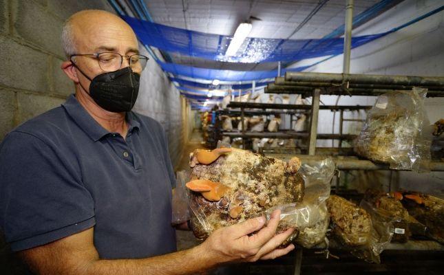El biòleg Carles Díaz Tarragó, director de Bolet Ben Fet, i fetge de vaca