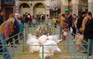 Mercat de Nadal de Valls