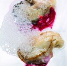 Ostrons del delta de l'Ebre amb puré de remolatxa i aire de fonoll