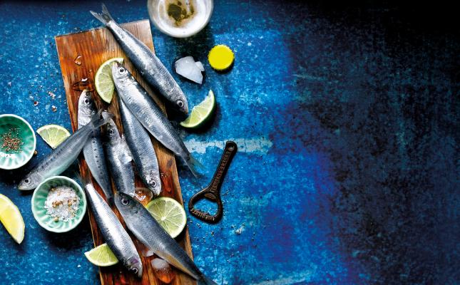 Sardines fresques