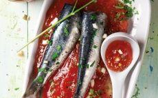 Sardines marinades sobre compota de tomàquet