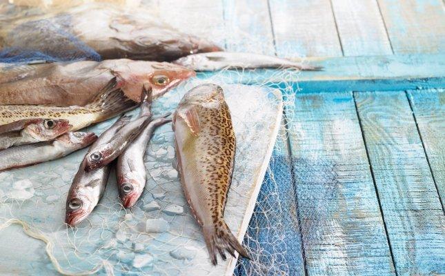 Peixos oblidats