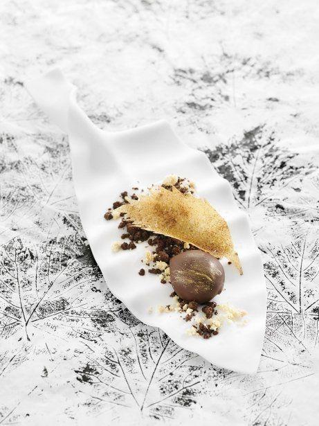 Castanya de Galícia i la fulla amb terra gelada de xocolata