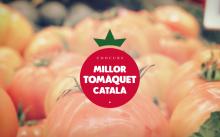 Busquem el millor tomàquet català
