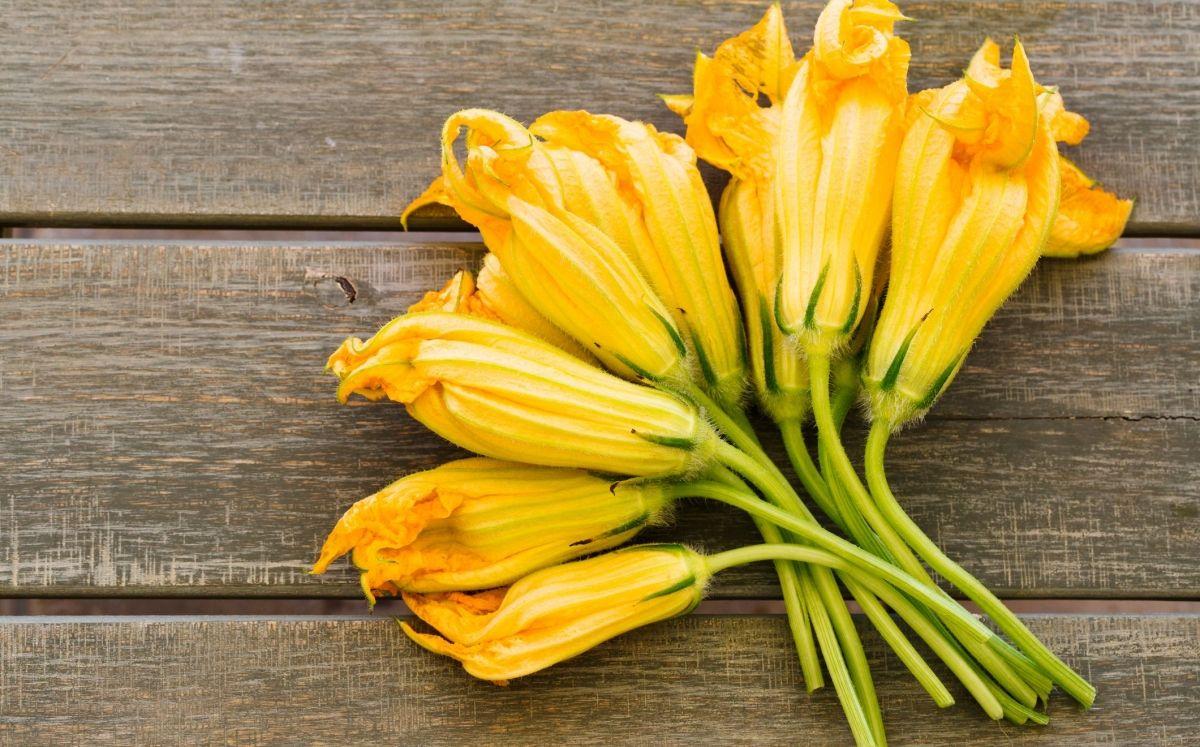 Flor de carbassó / Thinkstock