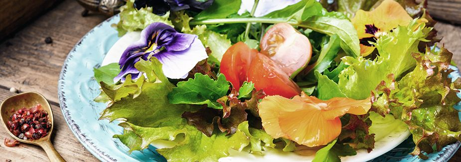 receptes primavera especial