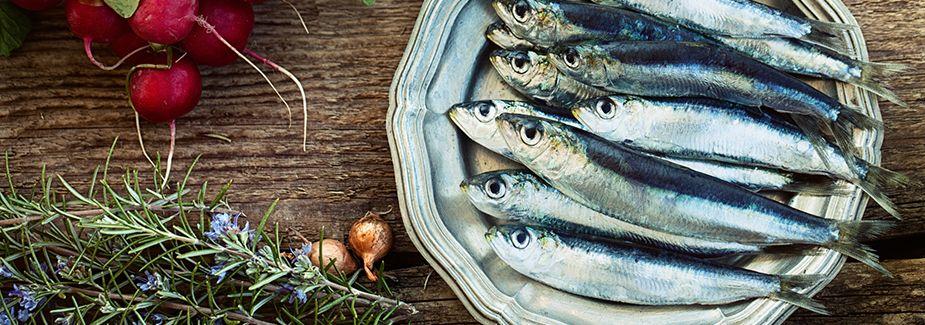 Receptes amb sardines