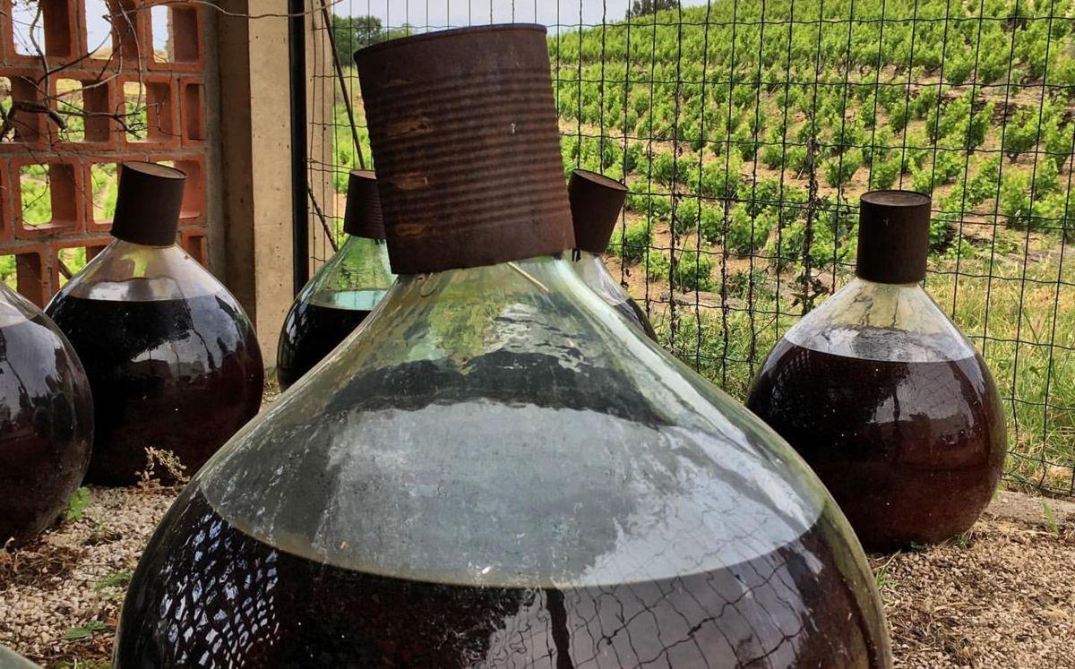 Vi de Banyuls